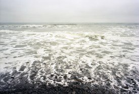 Andrew Roy - Point Reyes, CA 2007