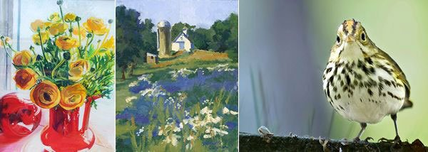 (left) Ranunculus with Red Glass, pastel, Valerie Upham; (middle) Minuteman Barn with Wildflowers, oil on panel, Julliette Carignan; (right) Ovenbird, photograph, Mary Dineen