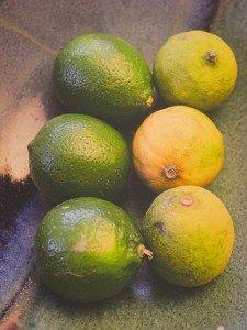 Amy Rindeskopf, Limes, photograph