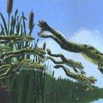 Brian Lies, Froggies Eight